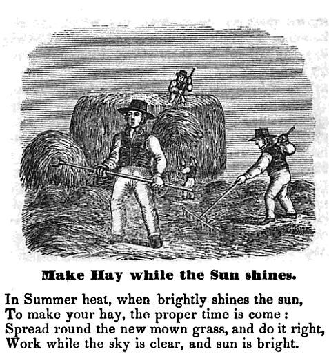 make-hay-while-the-sun-shines-from-the-hand-book-of-illustrated-proverbs-new-york-1857-by-john-w-barber