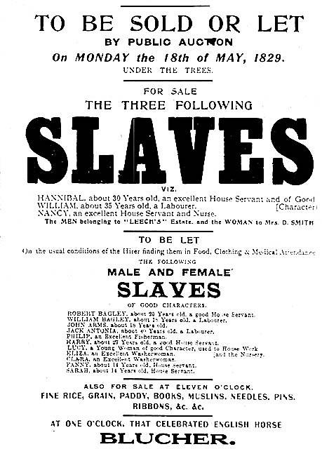 USA slave sale poster