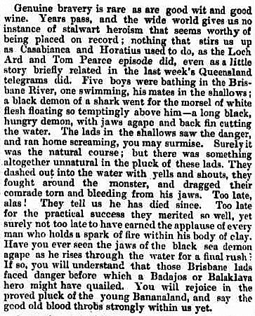 'Bananaland' - Sydney Mail and New South Wales Advertiser - 4 December 1880