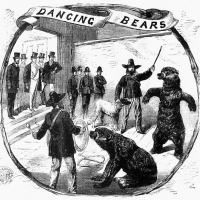 history of the phrase 'are you there with your bears?'