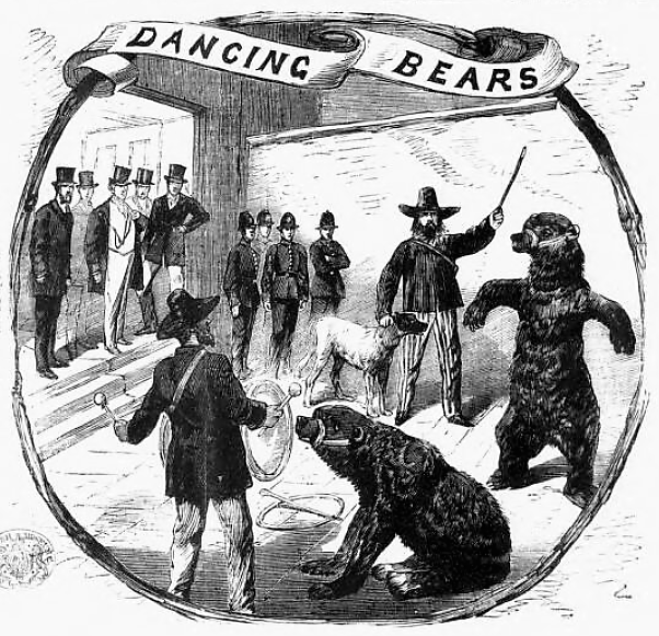 dancing bears - The Illustrated Police News (London, England) - 22 August 1868