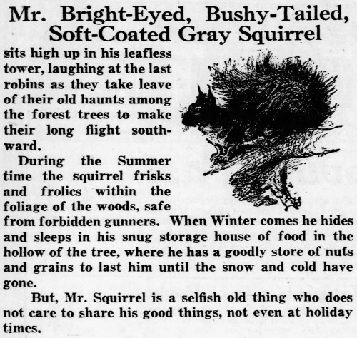 'bright-eyed bushy-tailed' - Philadelphia Inquirer (Pennsylvania) - 29 November 1920