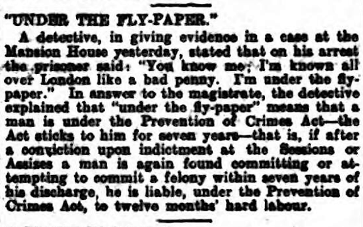 'under the flypaper' - The Southern Daily Echo (Southampton, Hampshire, England) - 17 October 1906