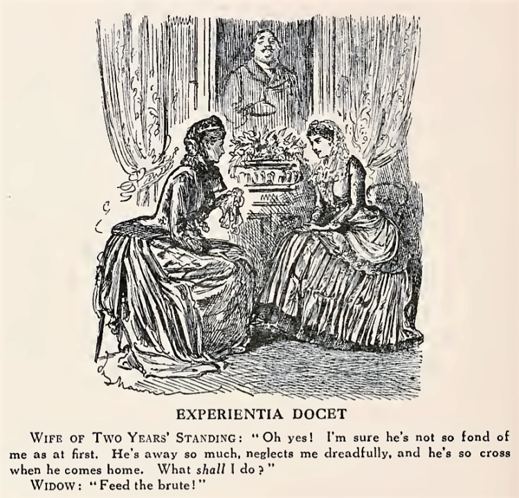 'Experientia Docet' by George du Maurier - from Vol. 3 of Mr. Punch's History of Modern England, by C. L. Graves