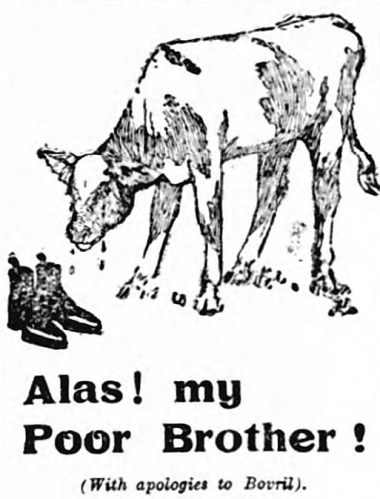 ad parodying Bovril - Wiltshire Times and Trowbridge Advertiser - 1 August 1908