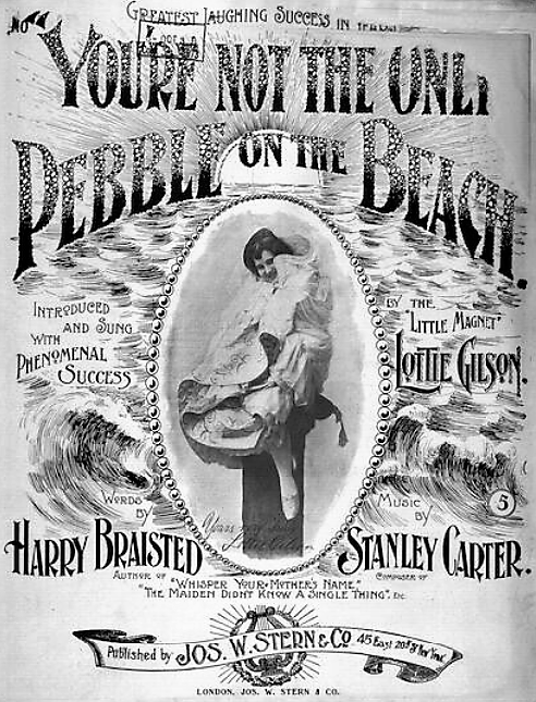 'You're Not the Only Pebble on the Beach' sheet music (1896)