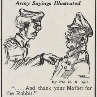 'thank your mother for the rabbit(s)': meanings and early occurrences